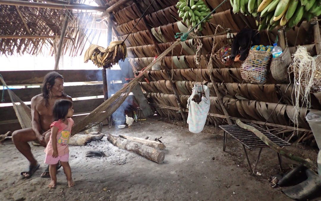 Amazoniako oihanean / In the Amazon Jungle